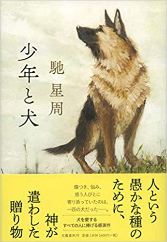 馳星周『少年と犬』小説あらすじと感想!「犬はただただ受け止めてくれる」